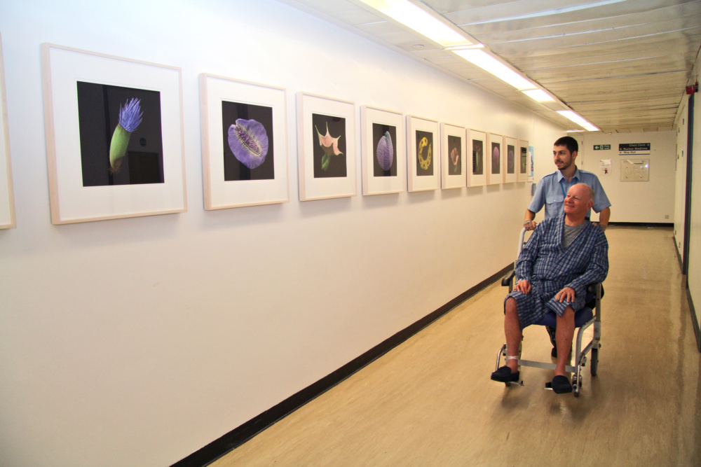 A man in a wheelchair being pushed through a corridor of paintings by another man